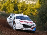 Peugeot 208 Type R5 2012, 2 of 3