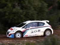 Peugeot 208 Type R5 2012, 3 of 3