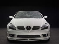 Piecha Design Mercedes-Benz SLK R171 Final Performance RS Edition, 2 of 6