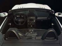 Piecha Design Mercedes-Benz SLK R171 Final Performance RS Edition, 4 of 6