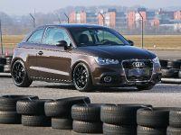 Pogea Racing Audi A1, 6 of 15