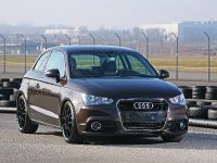 Pogea Racing Audi A1, 7 of 15