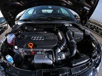 Pogea Racing Audi A1, 11 of 15