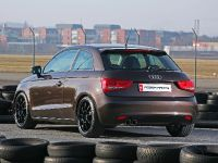 Pogea Racing Audi A1, 14 of 15