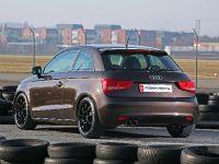 Pogea Racing Audi A1, 14 of 15