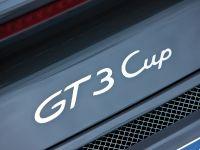 Porsche 911 GT3 Cup, 9 of 15