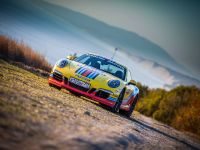 Porsche Martini Lineup , 1 of 9