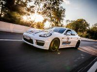Porsche Martini Lineup