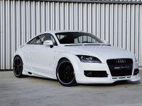 PPI PS Audi TT, 1 of 17
