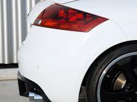 PPI PS Audi TT, 9 of 17