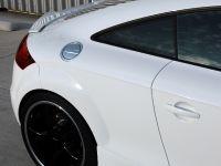 PPI PS Audi TT, 10 of 17