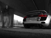 PPI Audi R8 Razor, 34 of 34