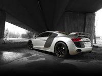 PPI Audi R8 Razor, 24 of 34
