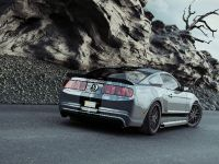 Reifen Coch Ford Mustang, 4 of 4
