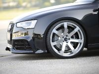 Reiger Audi A5, 6 of 12