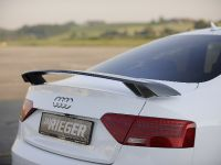 Reiger Audi A5, 12 of 12