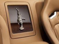 Rembrandt Bugatti Veyron Grand Sport Vitesse, 9 of 15