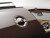 Rembrandt Bugatti Veyron Grand Sport Vitesse, 14 of 15