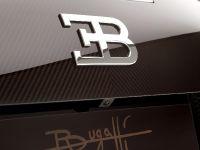 Rembrandt Bugatti Veyron Grand Sport Vitesse, 15 of 15