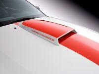 thumbnail image of ROUSH Speedster Fod Mustang