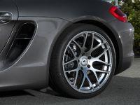 Schmidt Revolution Porsche Boxster, 11 of 14