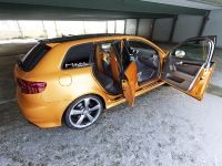 Schwabenfolia Audi RS3 Gold Orange, 8 of 13