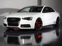 Senner Audi S5 Coupe, 1 of 11