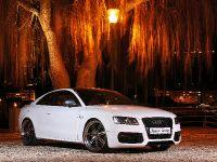 Senner Audi S5 White beast, 3 of 21