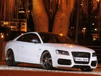 Senner Audi S5 White beast, 6 of 21