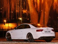 Senner Audi S5 White beast, 9 of 21