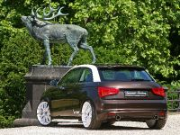SENNER Tuning Audi A1, 8 of 16