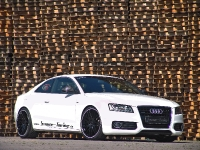 Senner Tuning Audi A5, 4 of 4