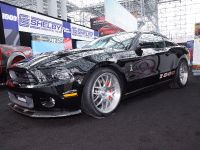 thumbnail image of Shelby 1000 New York 2013