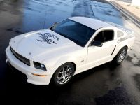 2008 Ford Shelby GT, 7 of 8