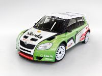 Skoda Fabia Super 2000 factory team car