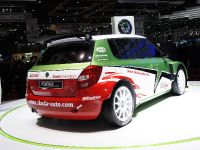 Skoda Fabia Super 2000 Geneva 2010, 3 of 3