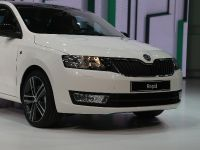 SKODA Rapid Paris 2012, 8 of 8