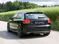 Sportec Audi RS 300, 12 of 14