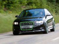 Sportec Audi RS 300, 11 of 14