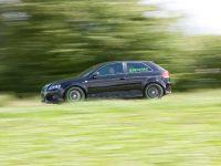 Sportec Audi RS 300, 10 of 14