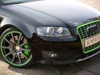 Sportec Audi RS 300, 9 of 14