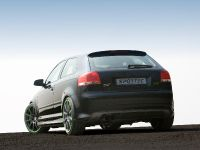 Sportec Audi RS 300, 8 of 14