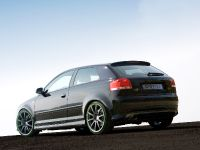 Sportec Audi RS 300, 7 of 14