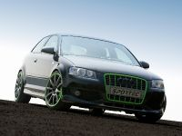 Sportec Audi RS 300, 1 of 14
