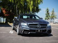 SR Auto Mercedes-Benz CLS63 AMG Project Maximus, 3 of 14