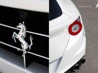 SR Auto Vindicator Ferrari FF, 8 of 9