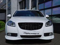 STEINMETZ Opel Insignia SportsTourer, 18 of 18