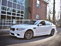 Switzer BMW M5 F10, 1 of 8