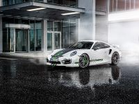 TechArt Carbon Sports Package - Porsche 991 and 981 , 11 of 11