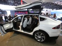 thumbnail image of Tesla Model X Detroit 2013